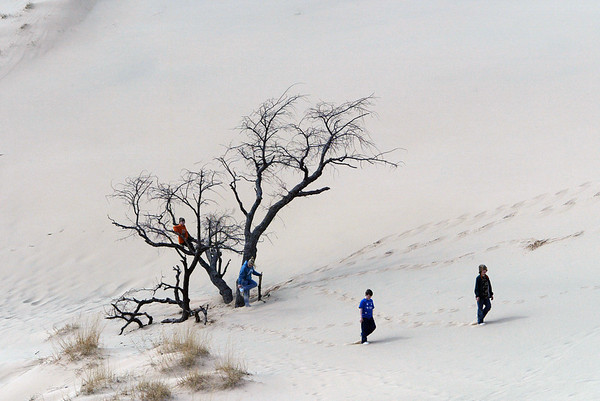Record-Eagle/Douglas Tesner<br /> Winston Underwood, 9, Connor Underwood, 8, Samantha Carr, 11, and Alex Breneman, 10, all from the Dublin Ohio area, enjoy part of their spring break at Sleeping Bear Dunes National Lakeshore Park.