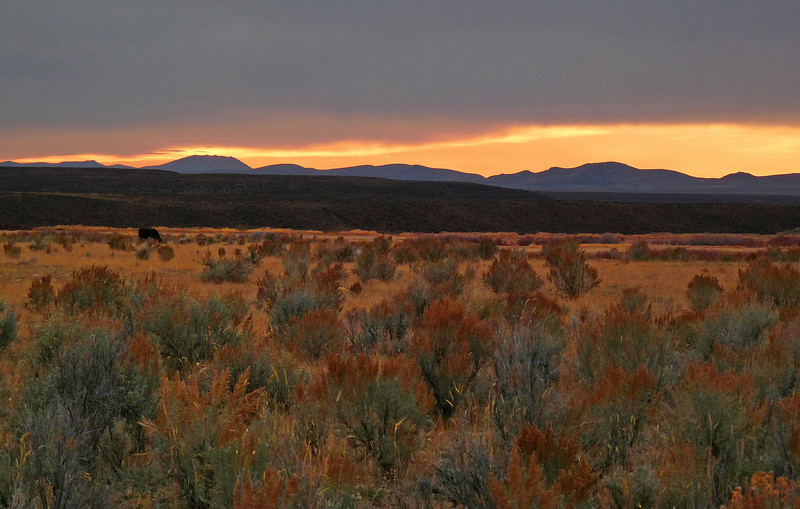 Sunset on the Range:  A sea of endless mountain ranges and basins stretch across the landscape created as the continental crust extended causing major block faulting, Lamoille, NV