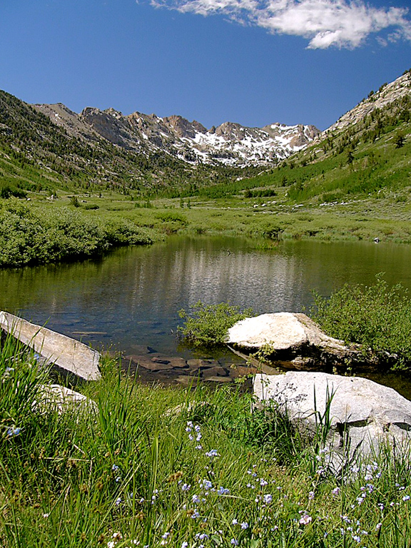 Lamoille Canyon, Ruby Mountains --- the view upcanyon