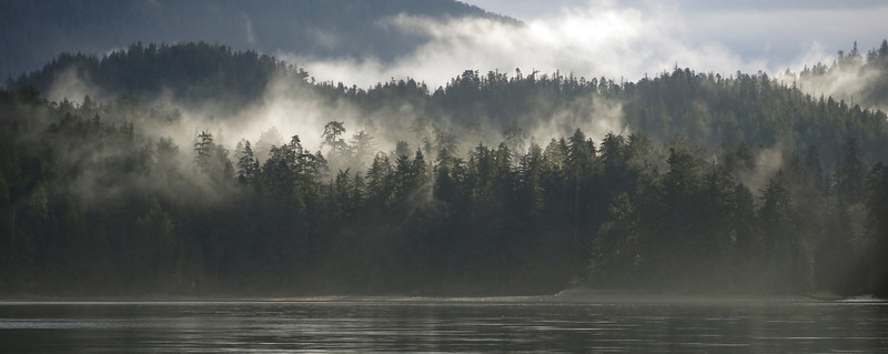 Early morning mist in Salmon Bay