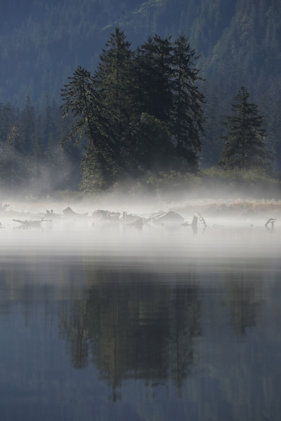 Eerie morning mist and light in Khutze Inlet