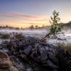 Great Falls Fog