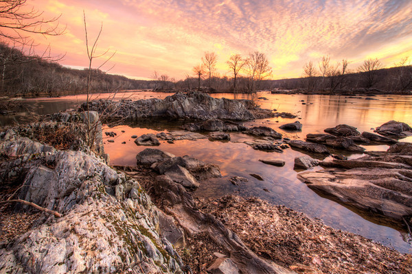 A Pink Sunrise in Great Falls, Virginia