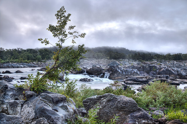 Great Falls Park on a Foggy Morning