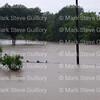 Rain Day, Lafayette, Louisiana 081316 093