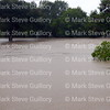 Rain Day, Lafayette, Louisiana 081316 094