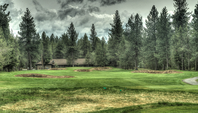 #11, rough shaped and ready for sod