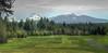 Big Meadow, #10