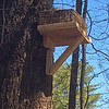 Wicker Basket Nest Stand