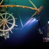 SS Kamloops wheel