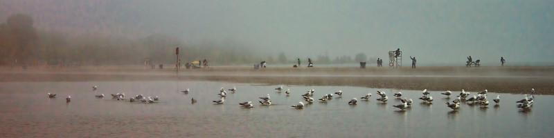 CHeery Beach 3