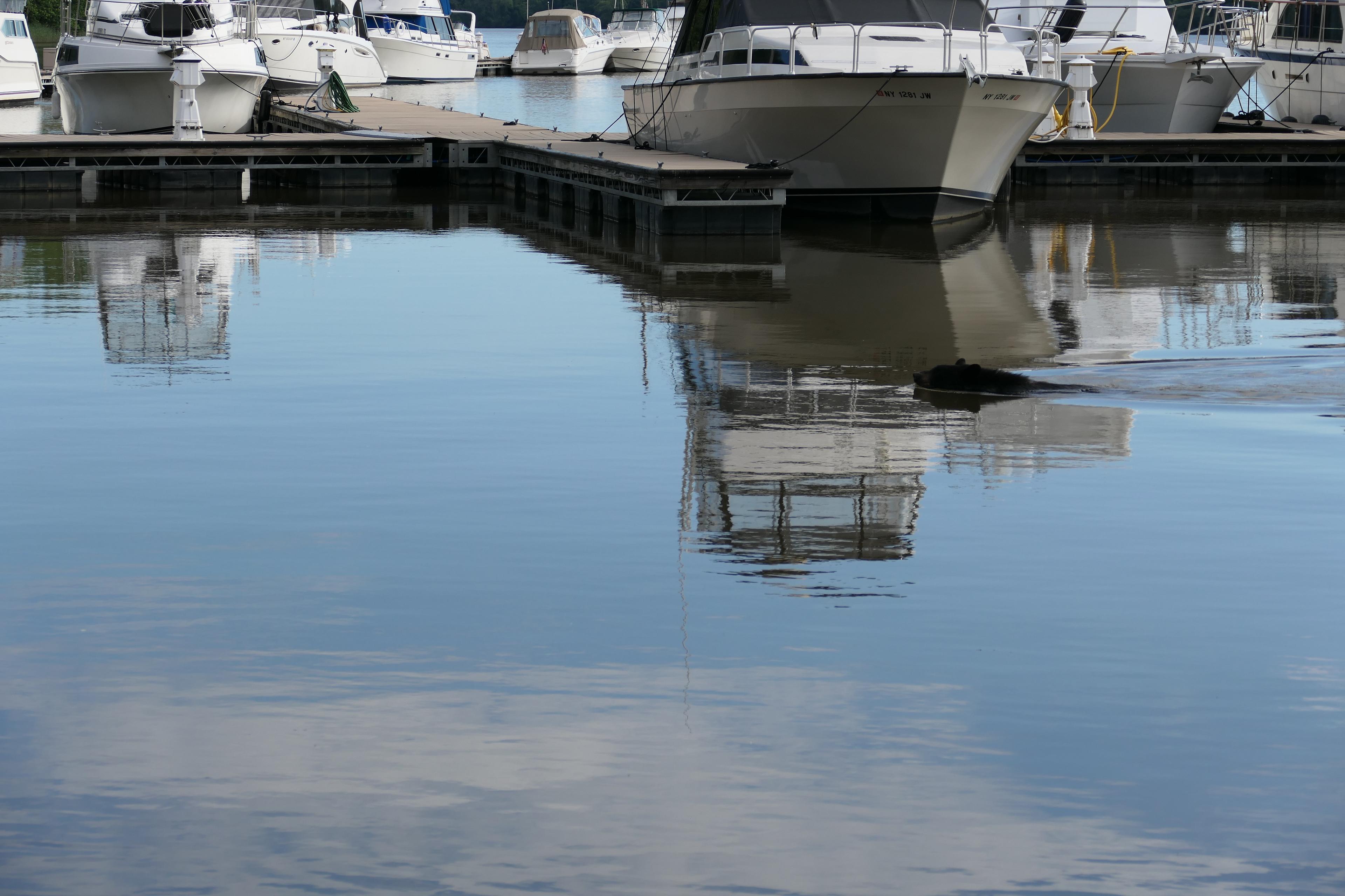 Paddling between the boats
