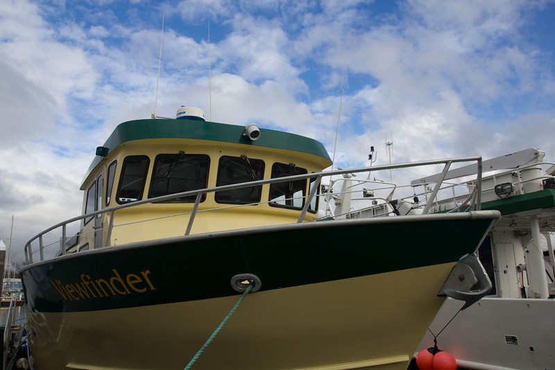 Our ride, Resurrection Bay, Seward.