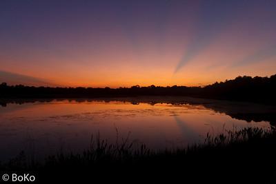 Orlando Wetlands Park