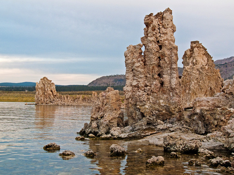 "Tufa towers, formed limestone.<br /> More info about tufa is here:<br /> <br /> <a href=""http://www.monolake.org/about"">http://www.monolake.org/about</a>"