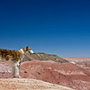 Fiona at the Painted Desert