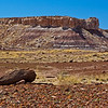 Petrified Forest National Park badlands