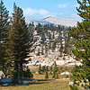 A rocky meadow.<br /> <br /> Day 1 - Tuolumne Meadows Lodge to Vogelsang camp.