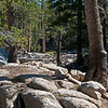 The first hour out is like a walk in the park.<br /> <br /> Day 1 - Tuolumne Meadows Lodge to Vogelsang camp.