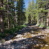 Just a few minutes out on the trail away from Tuolumne Meadows Lodge, we crossed this lazy stream.