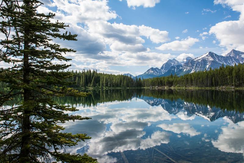 Herbert Lake Mirrir