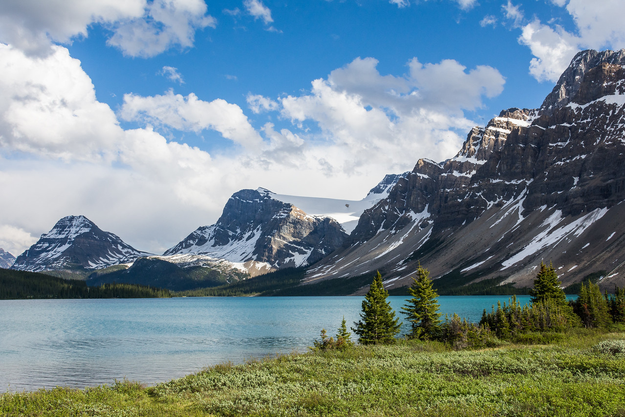 Bow Lake Afternoon