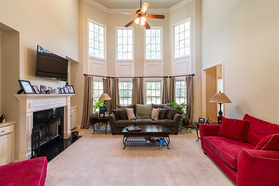 Great River At Tribble Mill Lawrenceville Home For Sale (6)