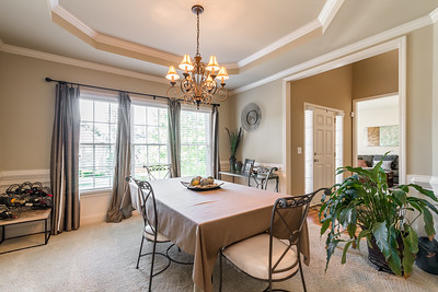 Great River At Tribble Mill Lawrenceville Home For Sale (10)