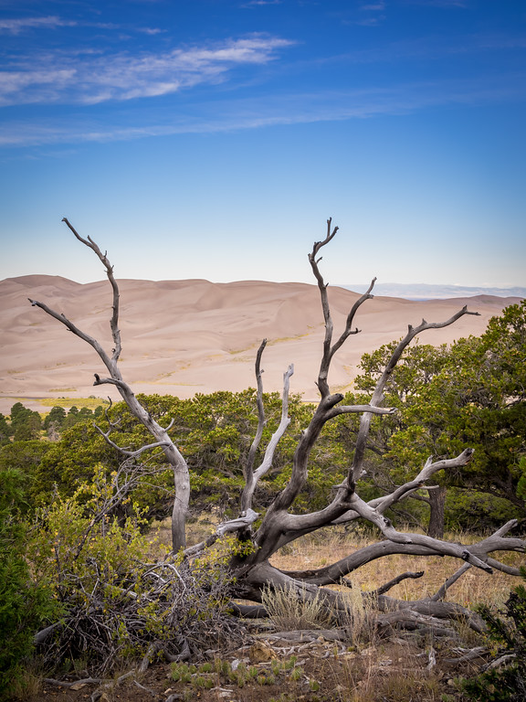 Great Sand Dunes National Park and Preserve, southern Colorado