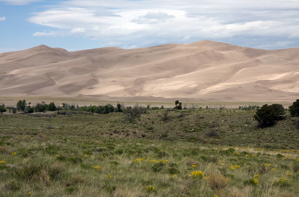 Taken from the looking near the entrance to the park. I can't believe that after living in Colorado 15+ years, this was my first visit to the Sand Dunes. It's an amazing place, and a place we will absolutely come back to visit again.