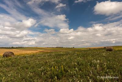 Farm Country - Washington County, OH