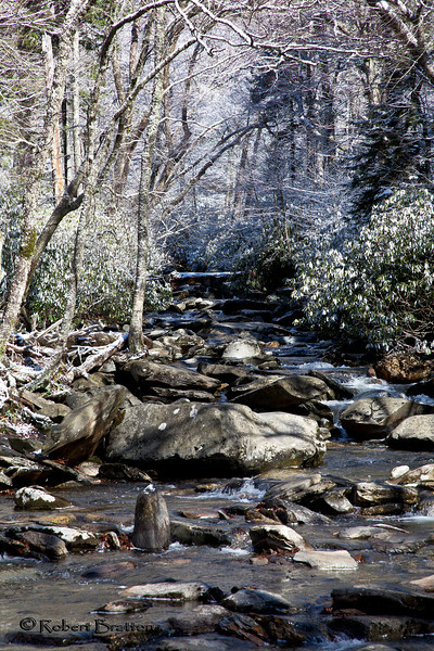 Snowy Stream by Newfound Gap Road