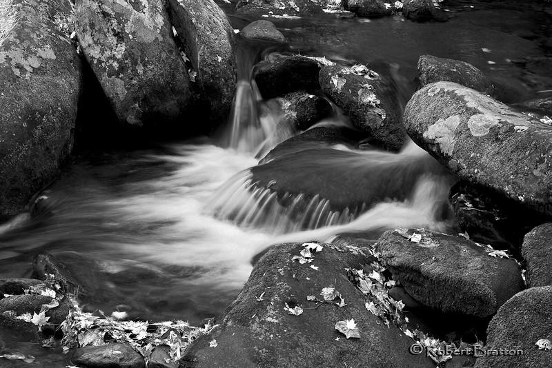 Stream in Black & White