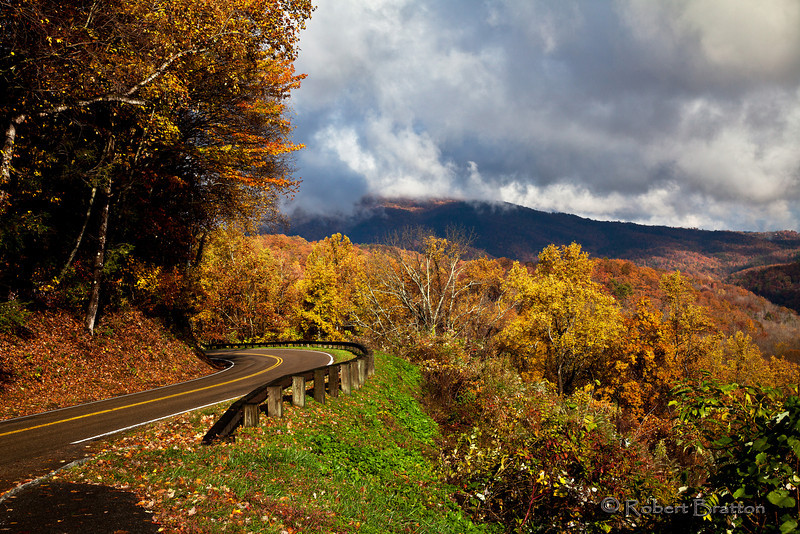 Fall Colors on Newfound Gap Road