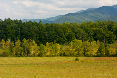 View across Cades Cove