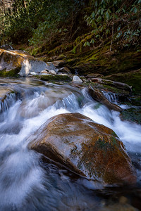 small rocky waterfall on a creek in the great smoky mountains national park