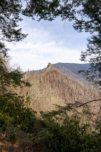 portrait of chimney tops from the mountain top look out framed by trees