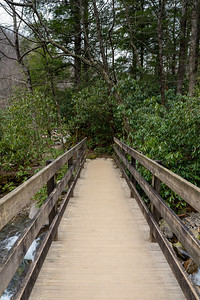 wooden bridge over a creek in the forest