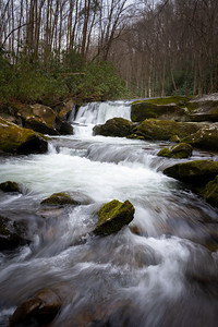 lynn prong cascades with mossy rocks in the spring