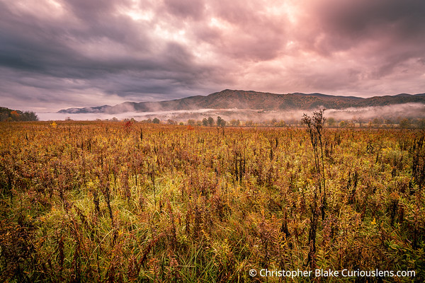 Morning Clouds - Cades Cove