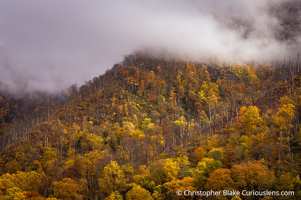 Color and Clouds - Smoky Mountains