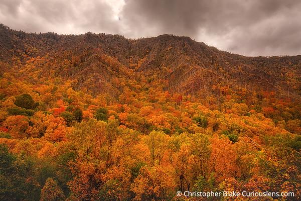 Peak of Color - Smoky Mountain