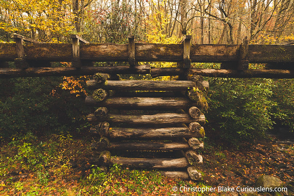 Support - Mingus Mill