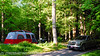 Our base camp in Elkmont campground, Great Smoky Mountains National Park.