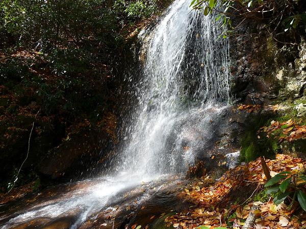 Big Creek Tributaries - Gunter Fork and Swallow Creek  (10/2009)