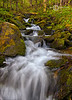 Tumbling Mountain Stream - Great Smoky Mountains National Park - Sheldon Farwell - April 2010