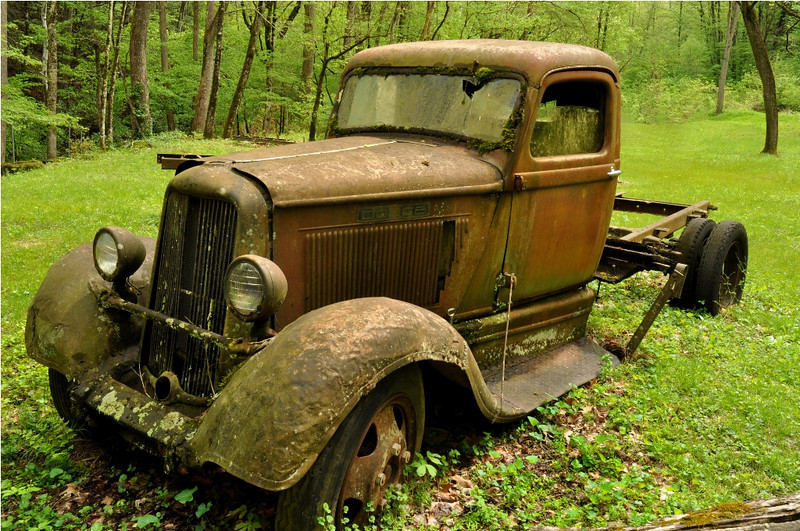 """For Sale - Needs Work"" - Great Smoky Mountains National Park - Mary Anderson - April 2011"