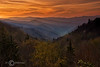 Golden Sunrise - Great Smoky Mountains National Park - Sheldon Farwell - April 2010