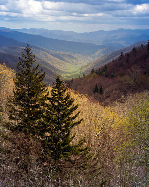 The View - Great Smoky Mountains National Park - John Remy - April 2012