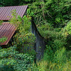 Old barn in Gatlinburg, being swallowed up by nature.